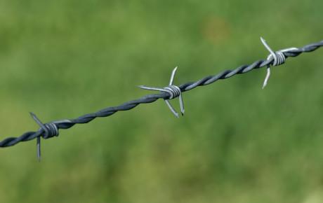 Hacking Networks: Barbed Bells